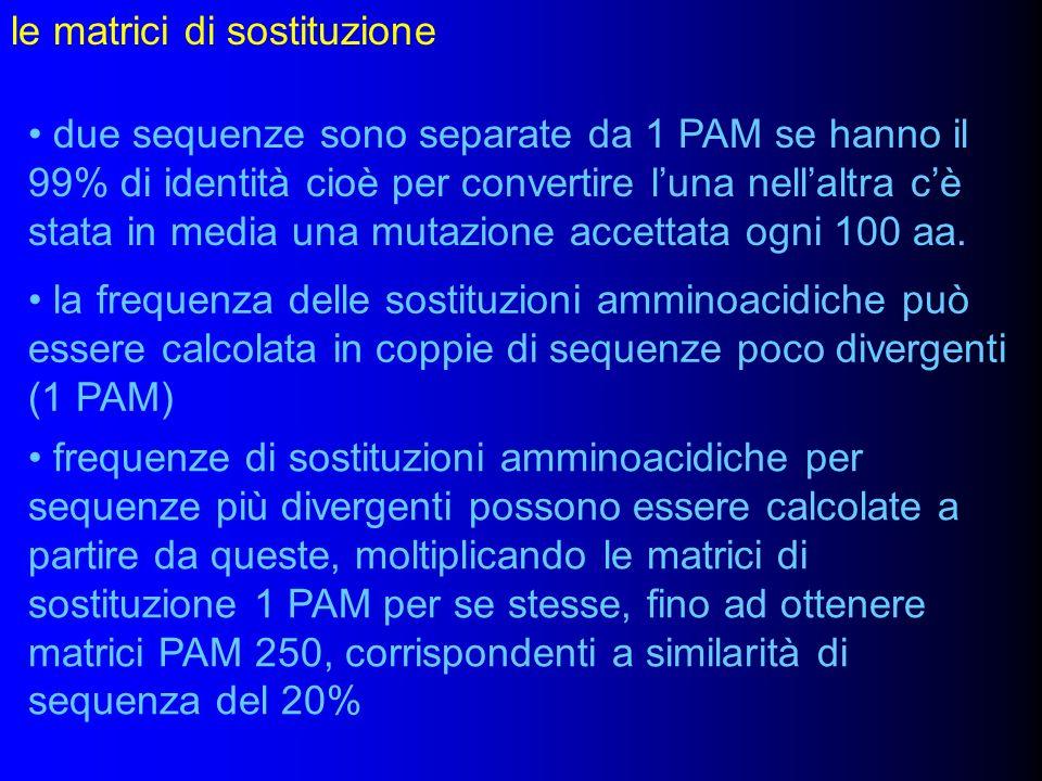 le matrici di sostituzione due sequenze sono separate da 1 PAM se hanno il 99% di identità cioè per convertire luna nellaltra cè stata in media una mu