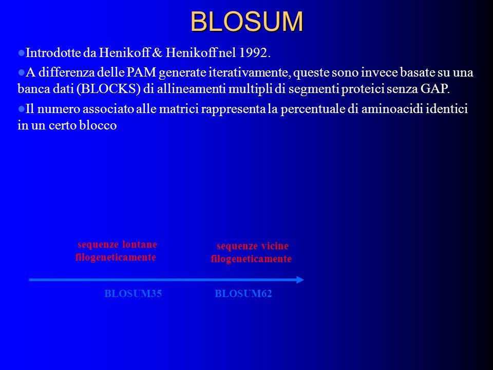 BLOSUM Introdotte da Henikoff & Henikoff nel 1992. A differenza delle PAM generate iterativamente, queste sono invece basate su una banca dati (BLOCKS