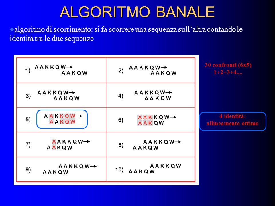 ALGORITMO BANALE algoritmo di scorrimento: si fa scorrere una sequenza sullaltra contando le identità tra le due sequenze 30 confronti (6x5) 1+2+3+4..