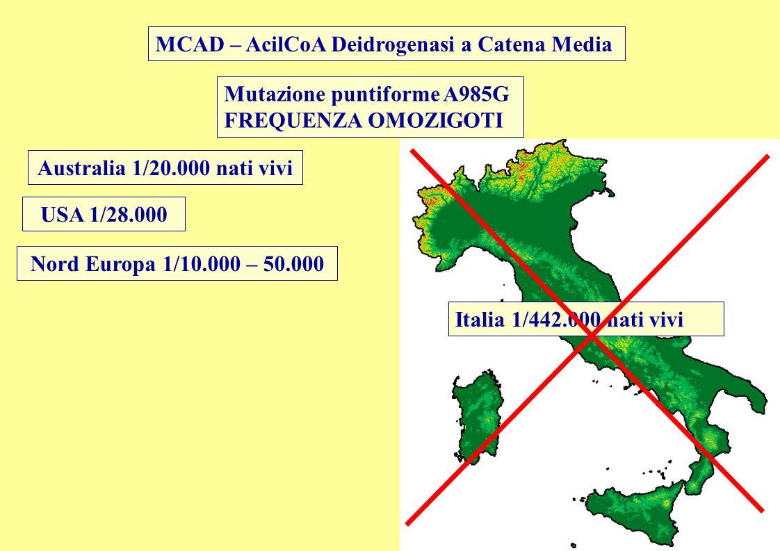 Mutazione puntiforme A985G FREQUENZA OMOZIGOTI MCAD – AcilCoA Deidrogenasi a Catena Media Australia 1/20.000 nati vivi USA 1/28.000 Nord Europa 1/10.0