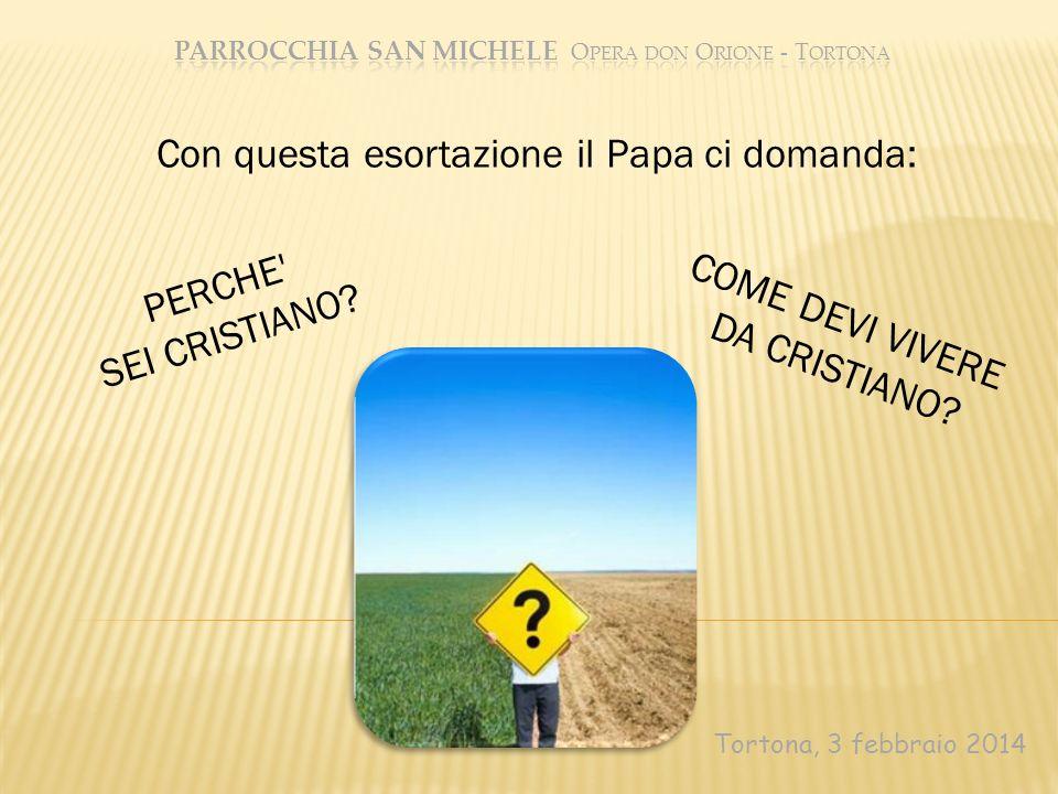 Tortona, 3 febbraio 2014 Con questa esortazione il Papa ci domanda: PERCHE' SEI CRISTIANO? COME DEVI VIVERE DA CRISTIANO?