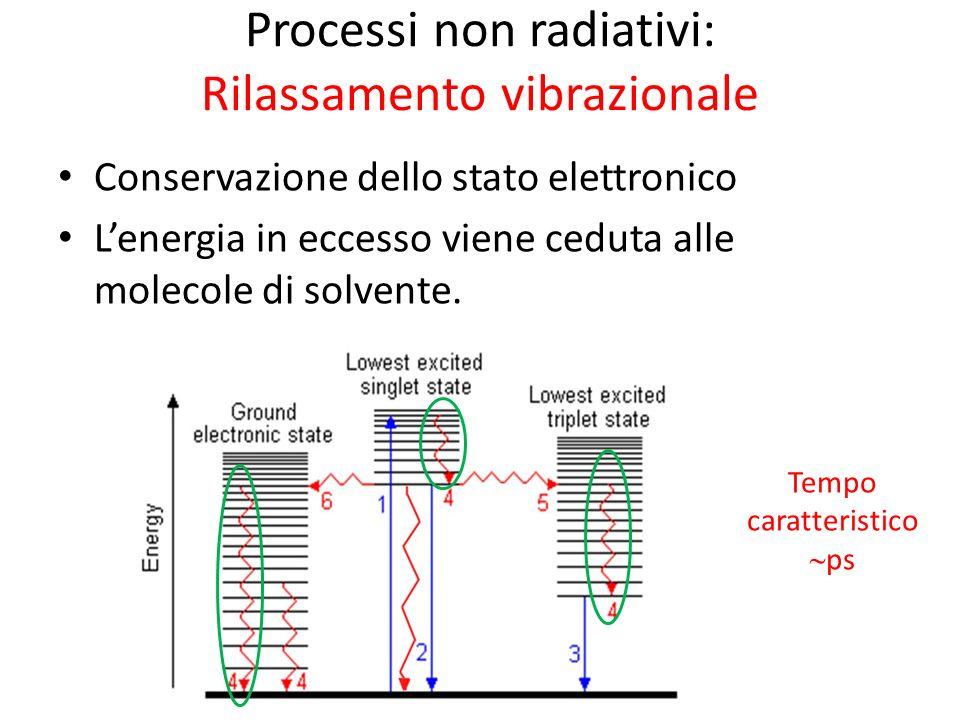 Processi non radiativi: Rilassamento vibrazionale Conservazione dello stato elettronico Lenergia in eccesso viene ceduta alle molecole di solvente.
