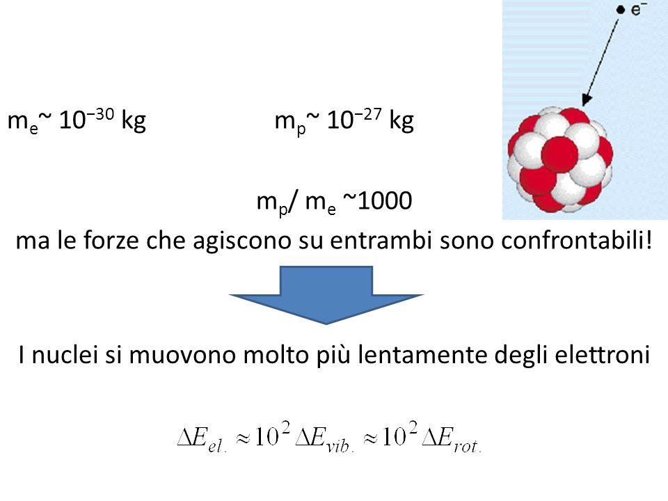m e ~ 10 30 kgm p ~ 10 27 kg m p / m e ~1000 ma le forze che agiscono su entrambi sono confrontabili! I nuclei si muovono molto più lentamente degli e