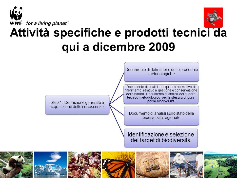 Attività specifiche e prodotti tecnici da qui a dicembre 2009 Step 1.
