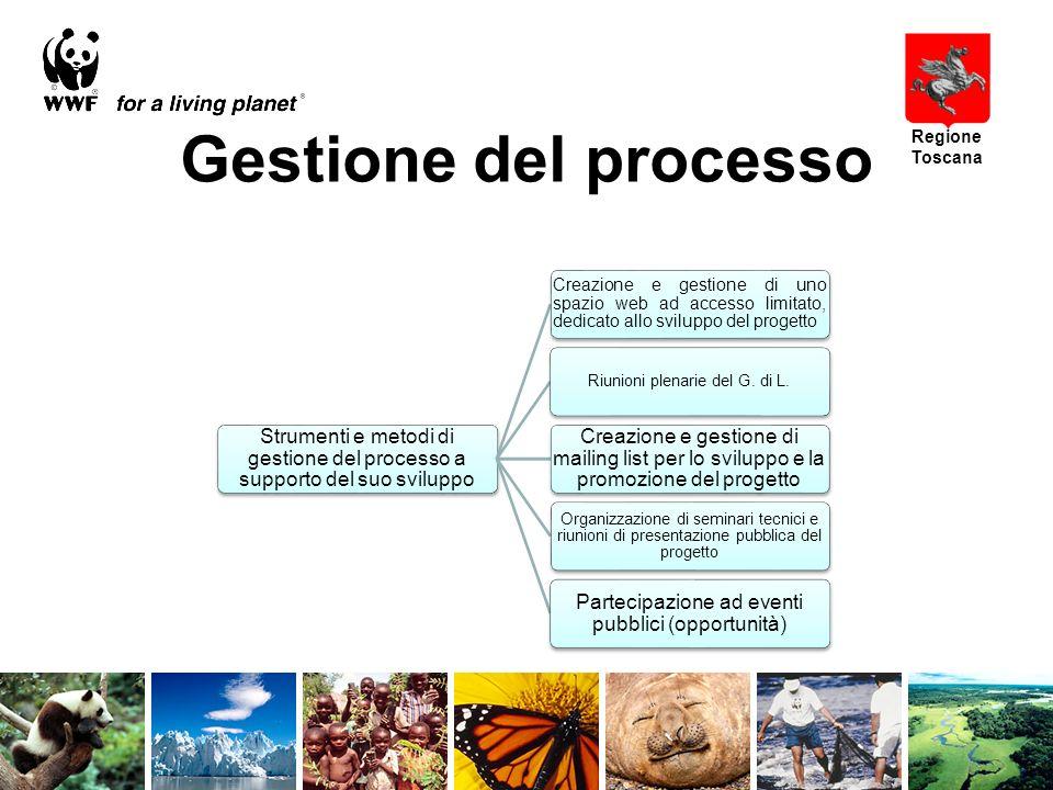 Gestione del processo Strumenti e metodi di gestione del processo a supporto del suo sviluppo Creazione e gestione di uno spazio web ad accesso limitato, dedicato allo sviluppo del progetto Riunioni plenarie del G.