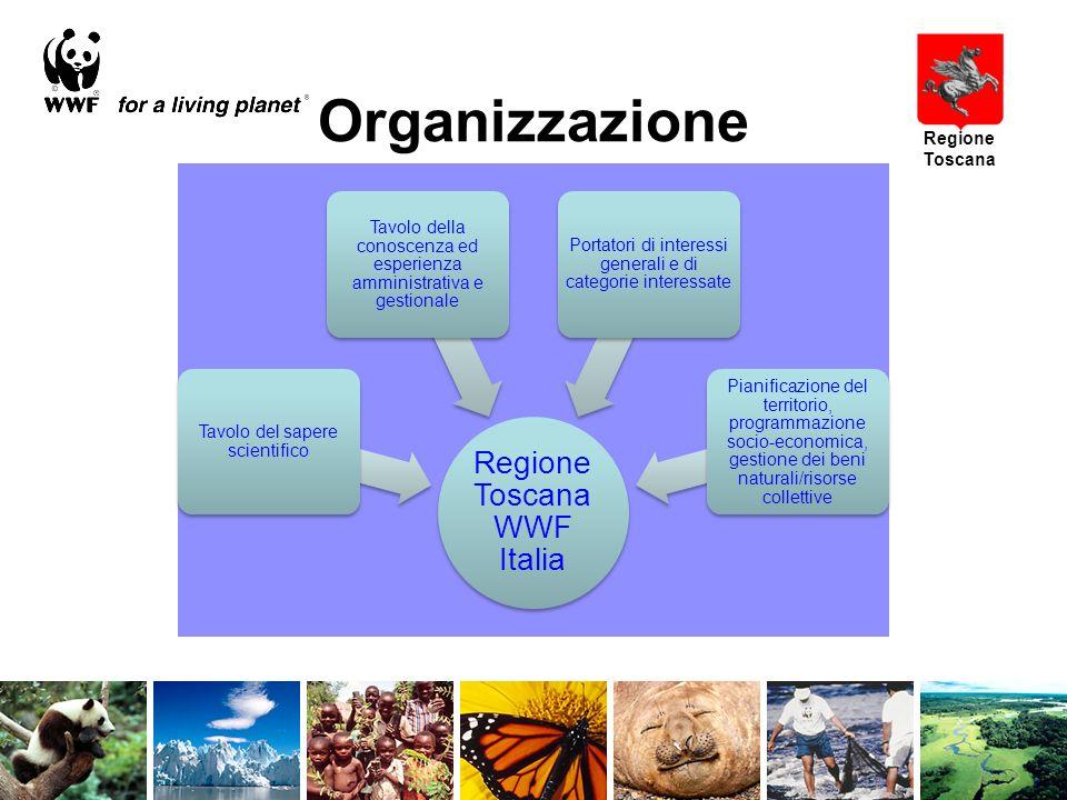 Organizzazione Regione Toscana Regione Toscana WWF Italia Tavolo del sapere scientifico Tavolo della conoscenza ed esperienza amministrativa e gestionale Portatori di interessi generali e di categorie interessate Pianificazione del territorio, programmazione socio-economica, gestione dei beni naturali/risorse collettive