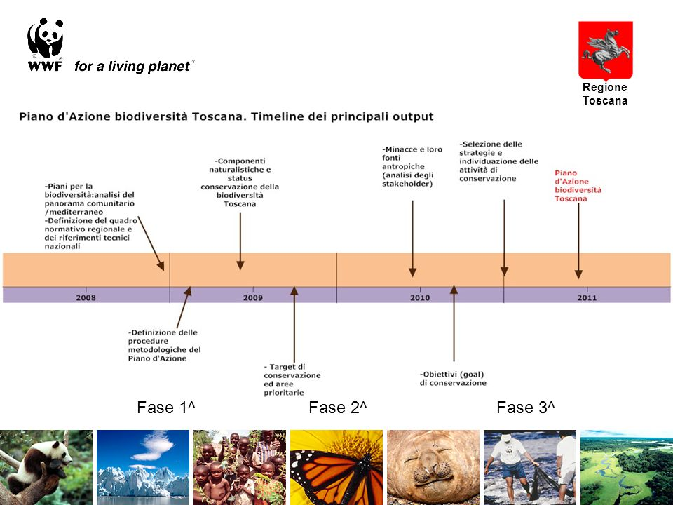 Scopo del piano dazione Hotspot di biodiversità Comunità Habitat Ecosistemi Processi ecologici Specie/Aggre gazioni di specie Regione Toscana Scegliere elementi rappresentativi della biodiversità toscana considerando differenti scale spaziali e differenti ambienti (di tipo terrestre, marino, acque interne), e pianificare per essi azioni di conservazione