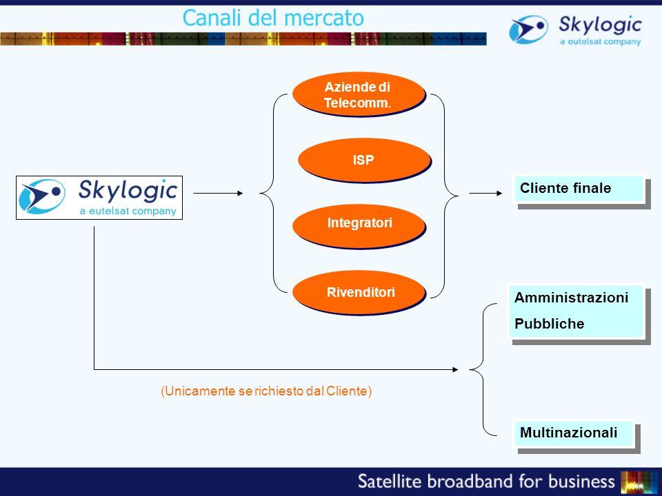 Canali del mercato TELCO ISP TELCO Integratori Rivenditori Aziende di Telecomm. Cliente finale Amministrazioni Pubbliche Amministrazioni Pubbliche Mul
