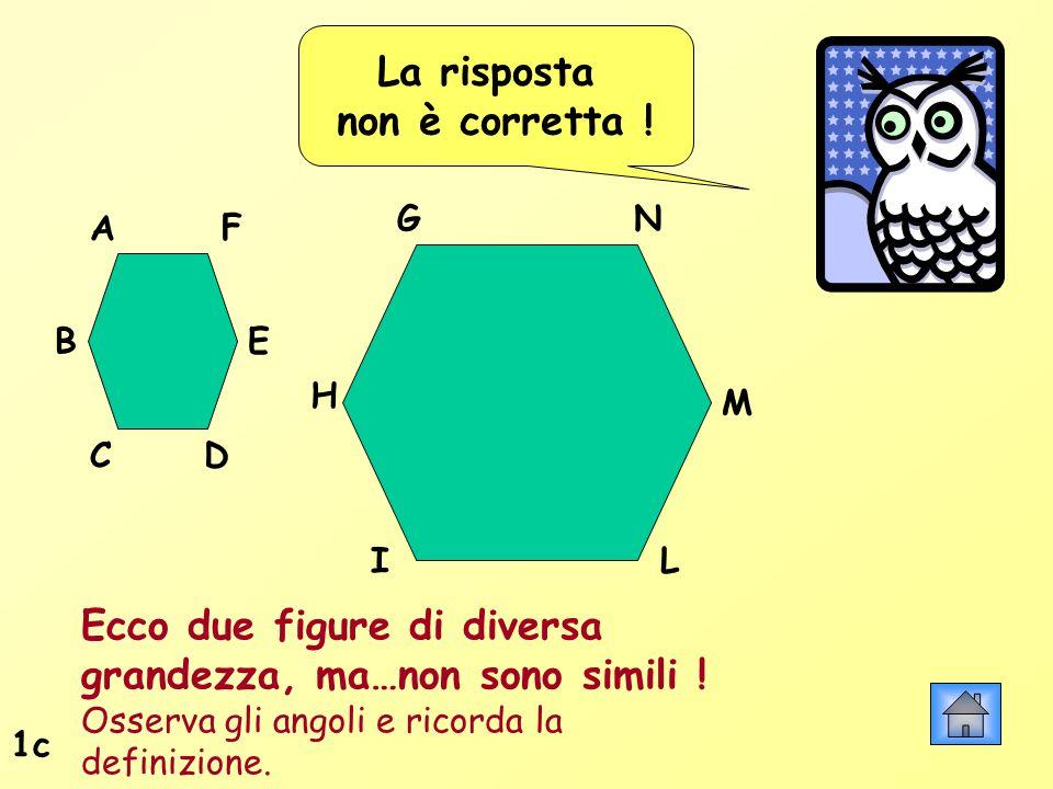 La risposta non è corretta ! Ecco due figure di diversa grandezza, ma…non sono simili ! Osserva gli angoli e ricorda la definizione. 1c A B CD H G F E