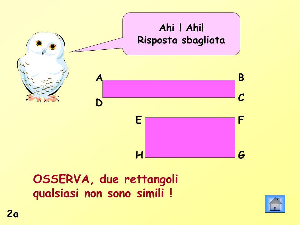 Ahi ! Ahi! Risposta sbagliata AB C D HG FE OSSERVA, due rettangoli qualsiasi non sono simili ! 2a