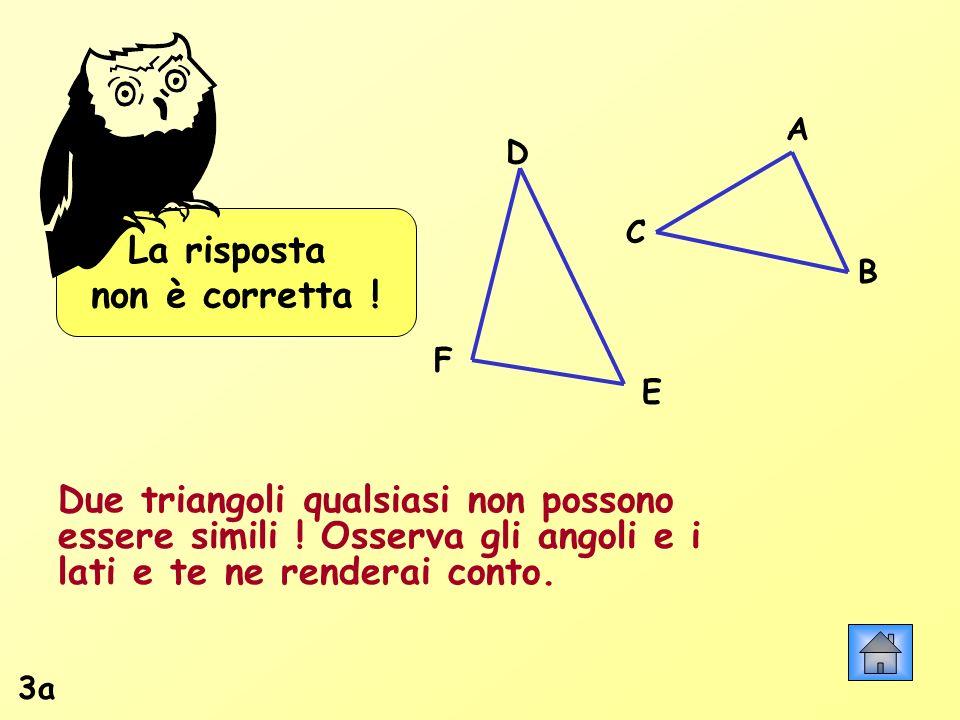 La risposta non è corretta ! A B C D F E Due triangoli qualsiasi non possono essere simili ! Osserva gli angoli e i lati e te ne renderai conto. 3a