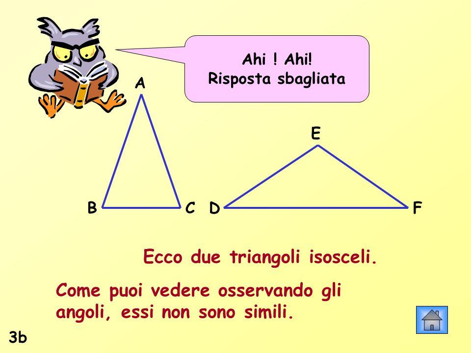 Ahi ! Ahi! Risposta sbagliata Ecco due triangoli isosceli. Come puoi vedere osservando gli angoli, essi non sono simili. 3b A BCDF E