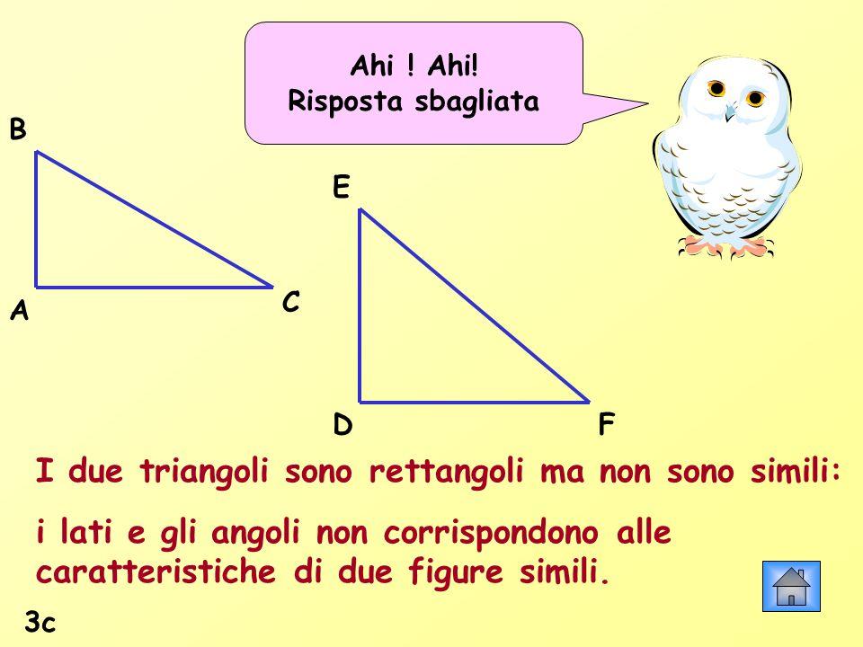 Ahi ! Ahi! Risposta sbagliata I due triangoli sono rettangoli ma non sono simili: i lati e gli angoli non corrispondono alle caratteristiche di due fi