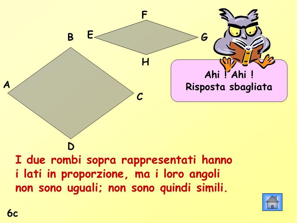 Ahi ! Risposta sbagliata 6c I due rombi sopra rappresentati hanno i lati in proporzione, ma i loro angoli non sono uguali; non sono quindi simili. A B