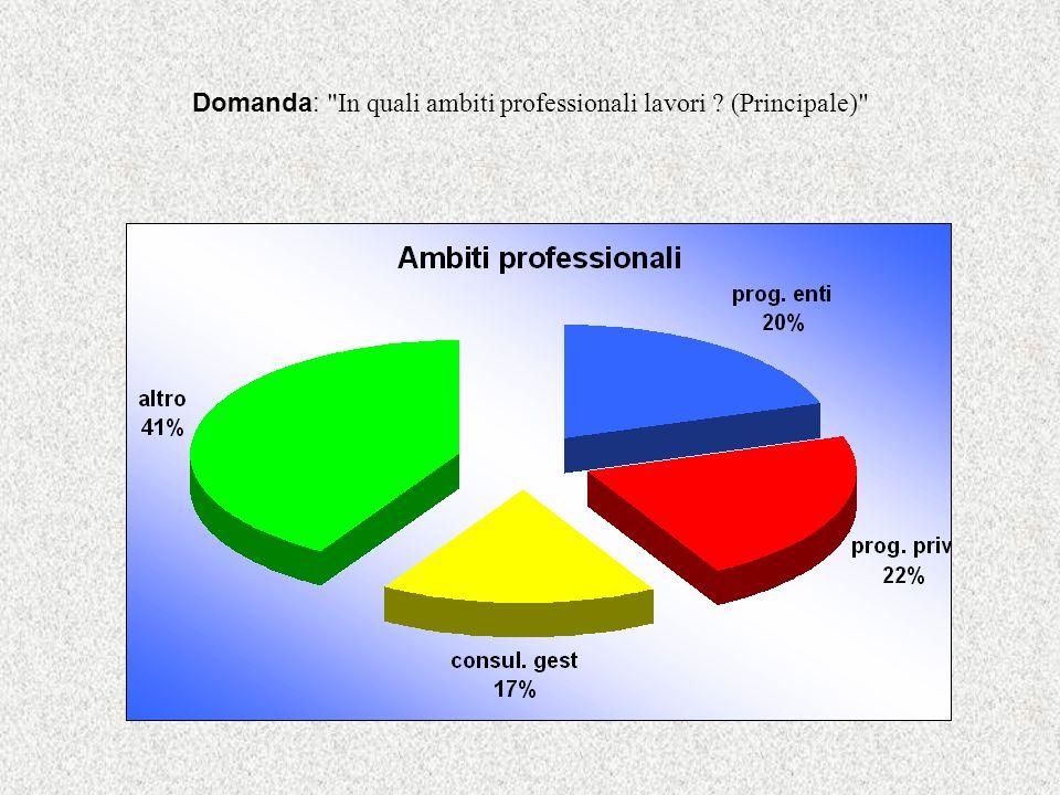 Domanda: In quali ambiti professionali lavori (Principale)