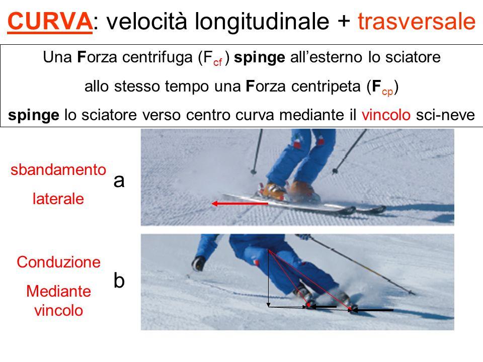 CURVA: velocità longitudinale + trasversale a b Una Forza centrifuga (F cf ) spinge allesterno lo sciatore allo stesso tempo una Forza centripeta (F c
