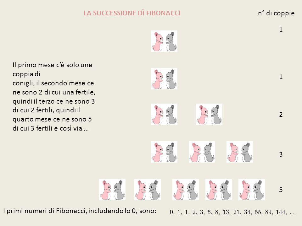 LA SUCCESSIONE DÌ FIBONACCI 1 1 2 3 5 Il primo mese cè solo una coppia di conigli, il secondo mese ce ne sono 2 di cui una fertile, quindi il terzo ce