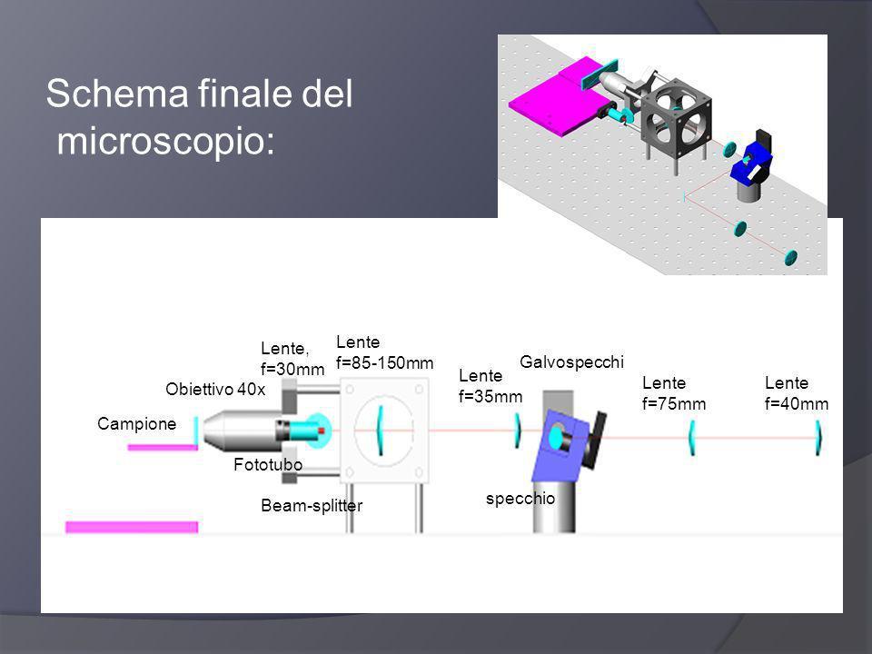 Schema finale del microscopio: Campione Obiettivo 40x Fototubo Beam-splitter Lente, f=30mm Lente f=85-150mm Lente f=35mm Galvospecchi specchio Lente f