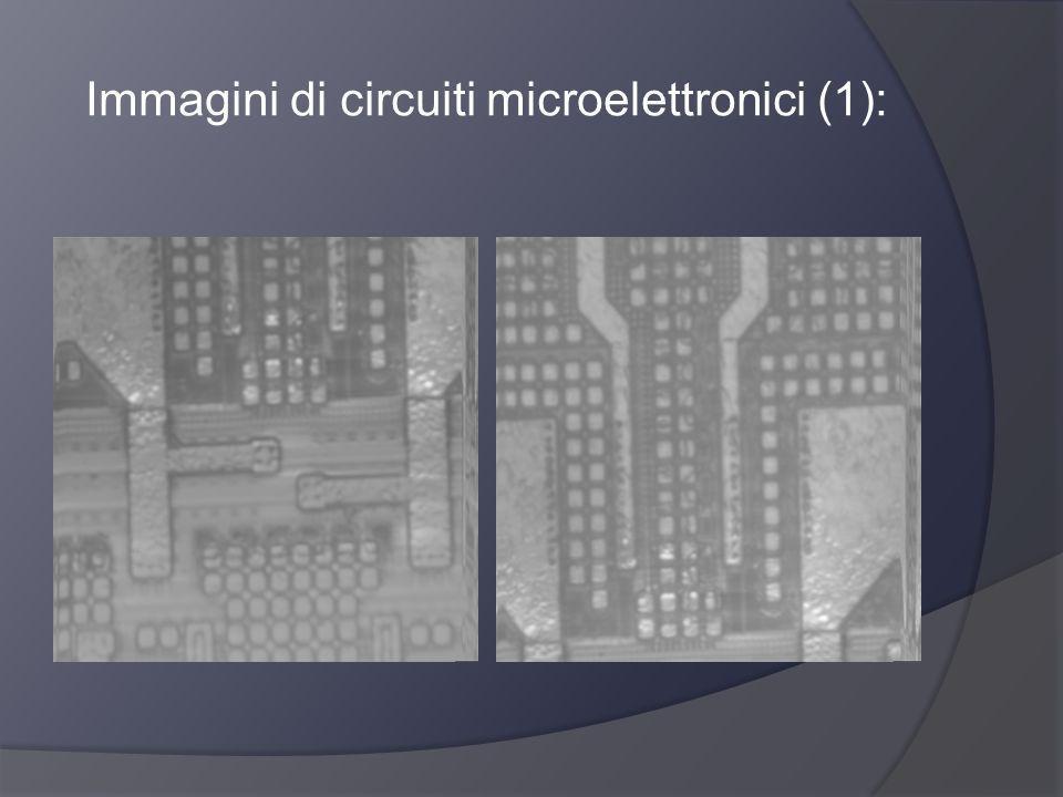 Immagini di circuiti microelettronici (1):