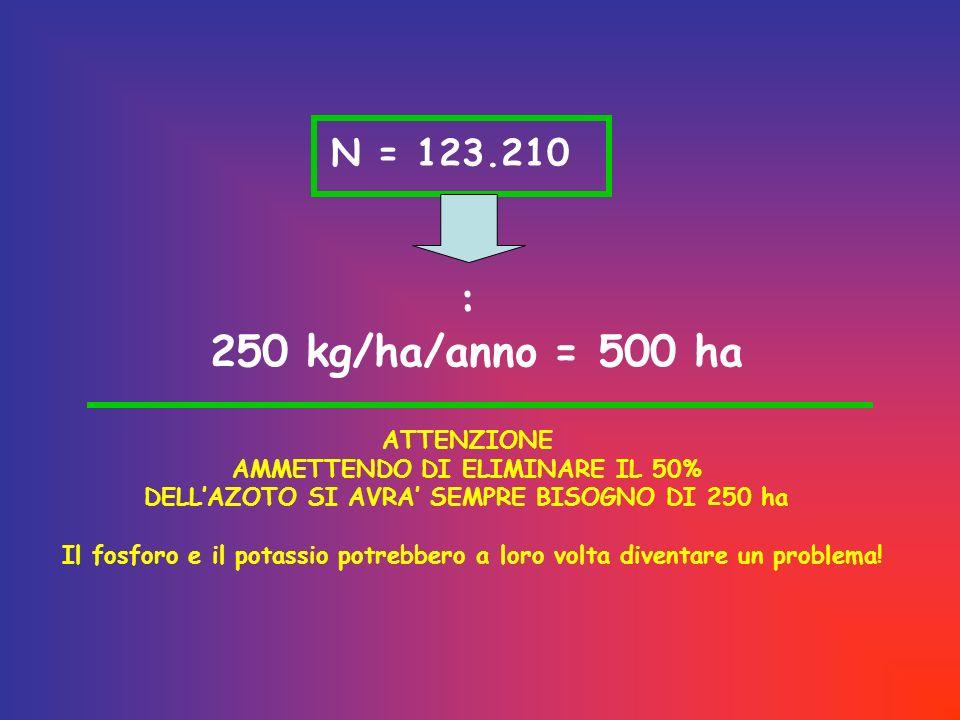 N = 123.210 : 250 kg/ha/anno = 500 ha ATTENZIONE AMMETTENDO DI ELIMINARE IL 50% DELLAZOTO SI AVRA SEMPRE BISOGNO DI 250 ha Il fosforo e il potassio potrebbero a loro volta diventare un problema!