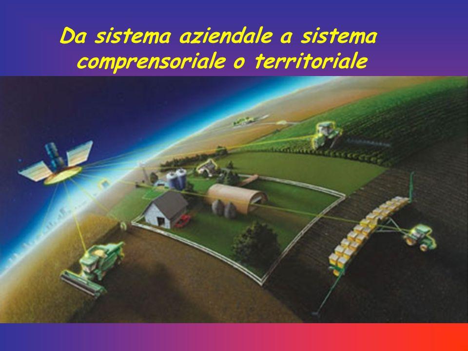 Da sistema aziendale a sistema comprensoriale o territoriale