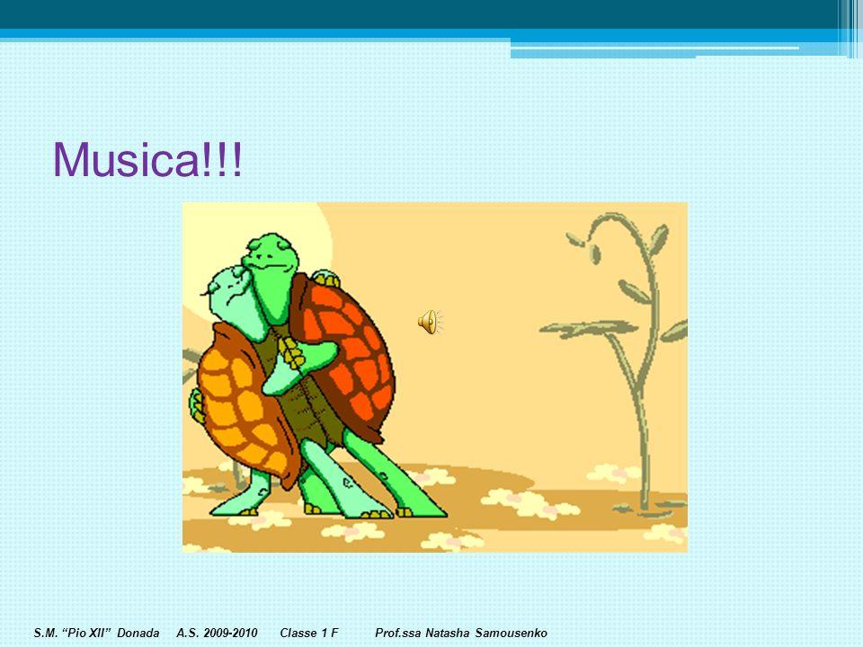 S.M. Pio XII Donada A.S. 2009-2010 Classe 1 F Prof.ssa Natasha Samousenko Un minuto di pausa