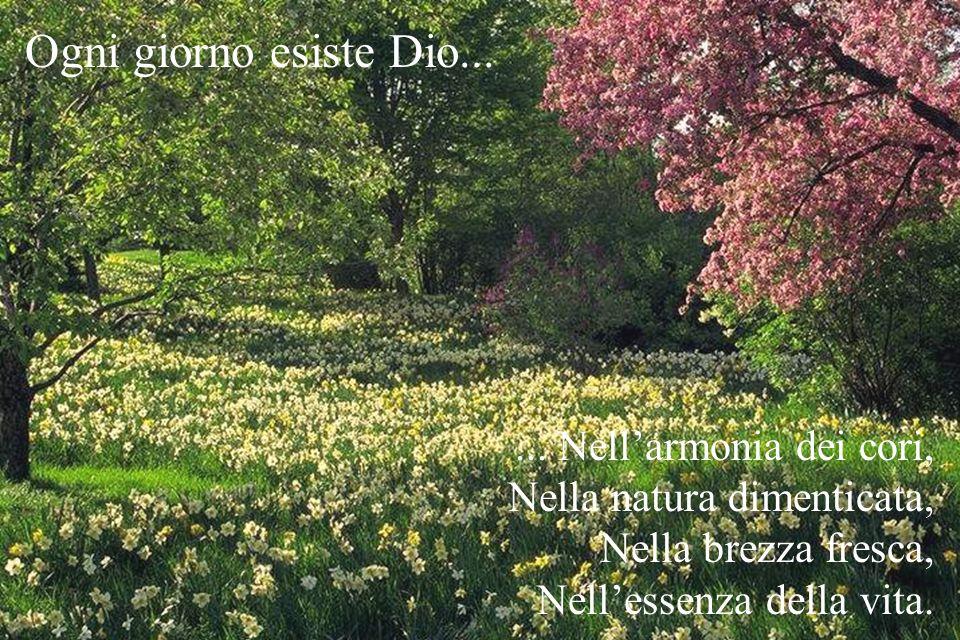 ...Nellarmonia dei cori, Nella natura dimenticata, Nella brezza fresca, Nellessenza della vita.