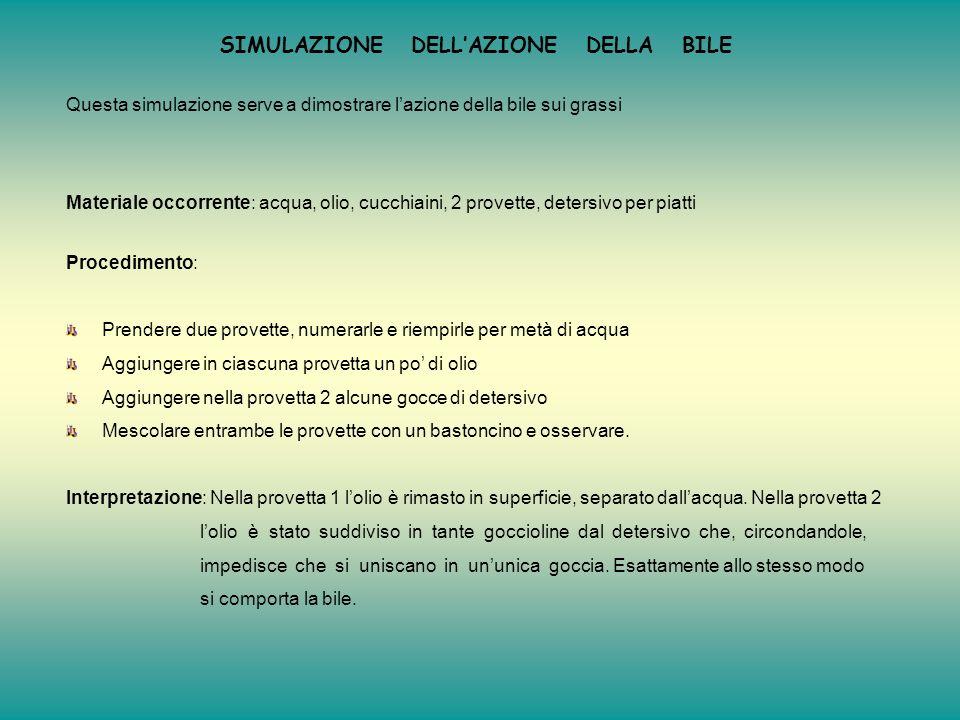 AlimentoOsservazioni sulla cartaInterpretazione 1 Olio DIVENTA TRASLUCIDACONTIENE GRASSI 2 Acqua NON DIVENTA TRASLUCIDANON CONTIENE GRASSI 3Latte DIVE