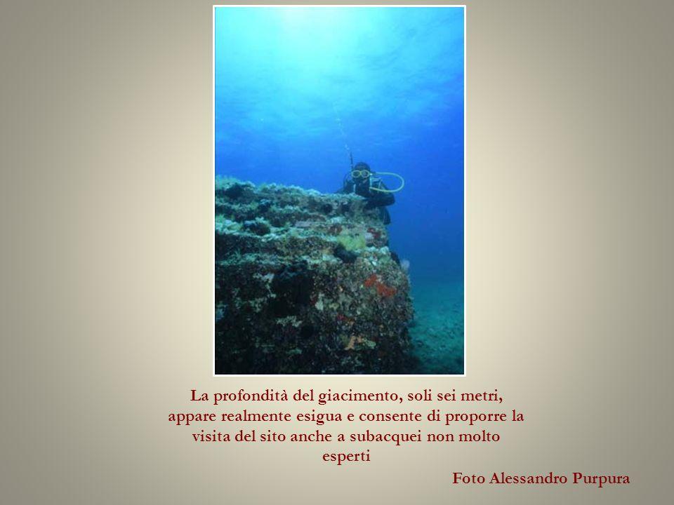 Foto Alessandro Purpura La profondità del giacimento, soli sei metri, appare realmente esigua e consente di proporre la visita del sito anche a subacquei non molto esperti