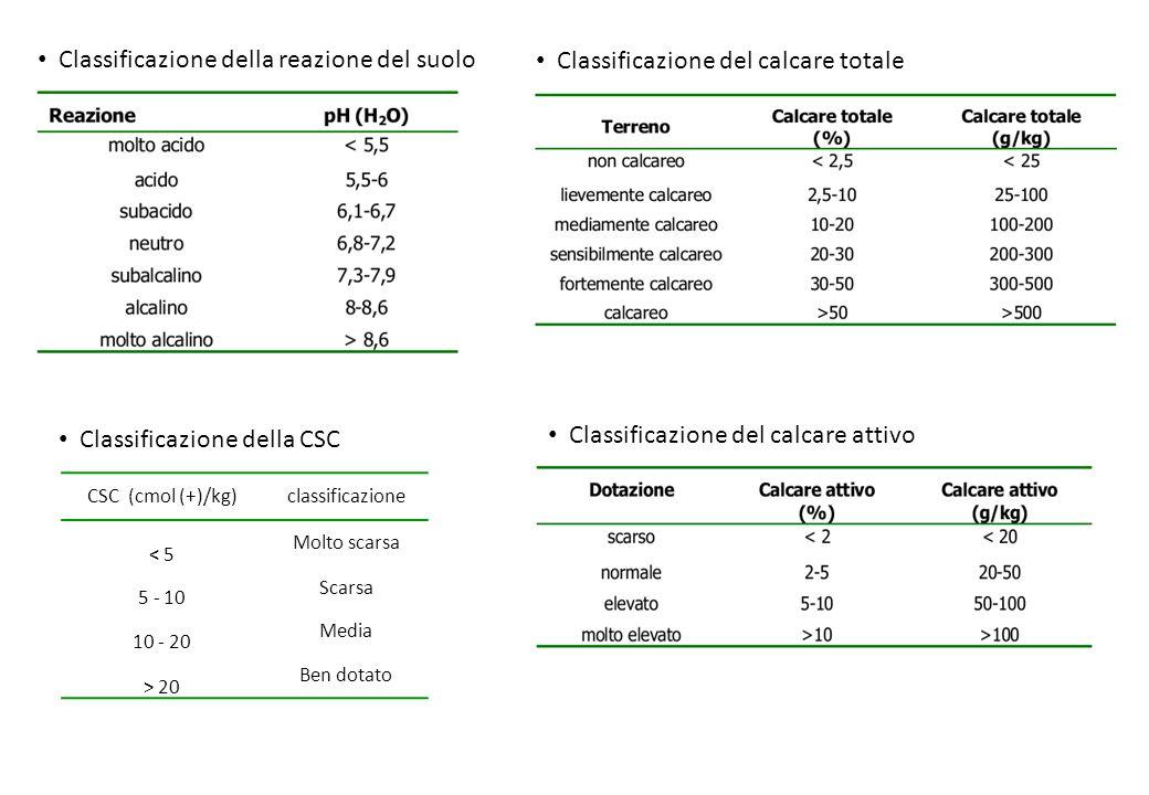 Classificazione della reazione del suolo CSC (cmol (+)/kg)classificazione < 5 Molto scarsa 5 - 10 Scarsa 10 - 20 Media > 20 Ben dotato Classificazione