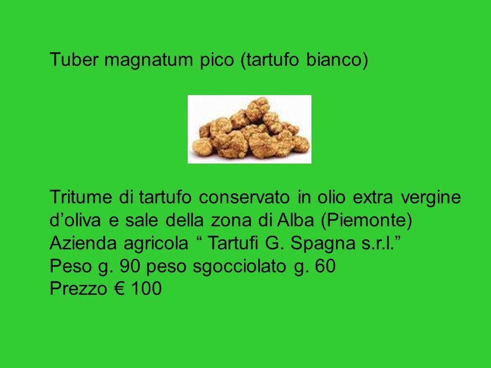 Tuber magnatum pico (tartufo bianco) Tritume di tartufo conservato in olio extra vergine doliva e sale della zona di Alba (Piemonte) Azienda agricola Tartufi G.