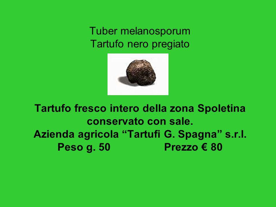 Tuber melanosporum Tartufo nero pregiato Tartufo fresco intero della zona Spoletina conservato con sale.
