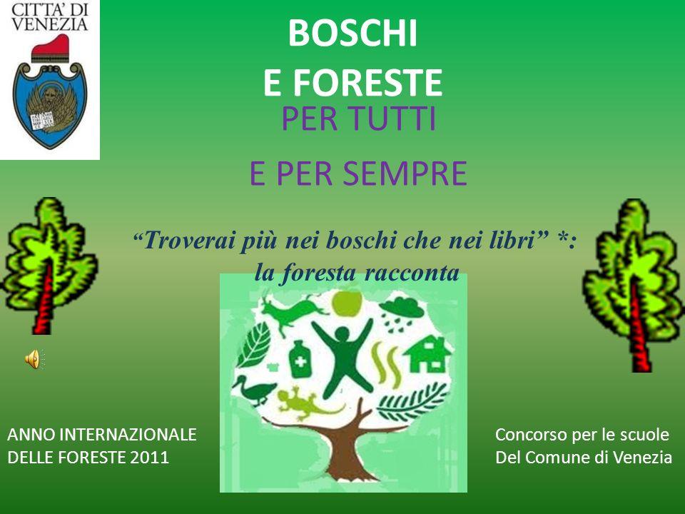 BOSCHI E FORESTE PER TUTTI E PER SEMPRE ANNO INTERNAZIONALE DELLE FORESTE 2011 Concorso per le scuole Del Comune di Venezia Troverai più nei boschi ch