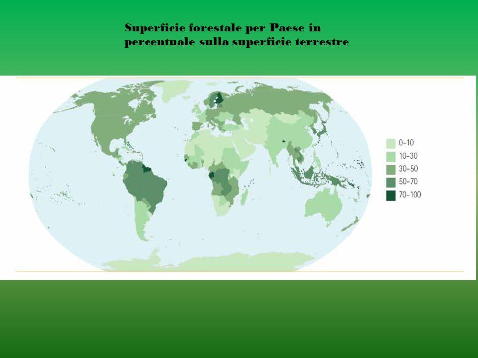 Superficie forestale per Paese in percentuale sulla superficie terrestre