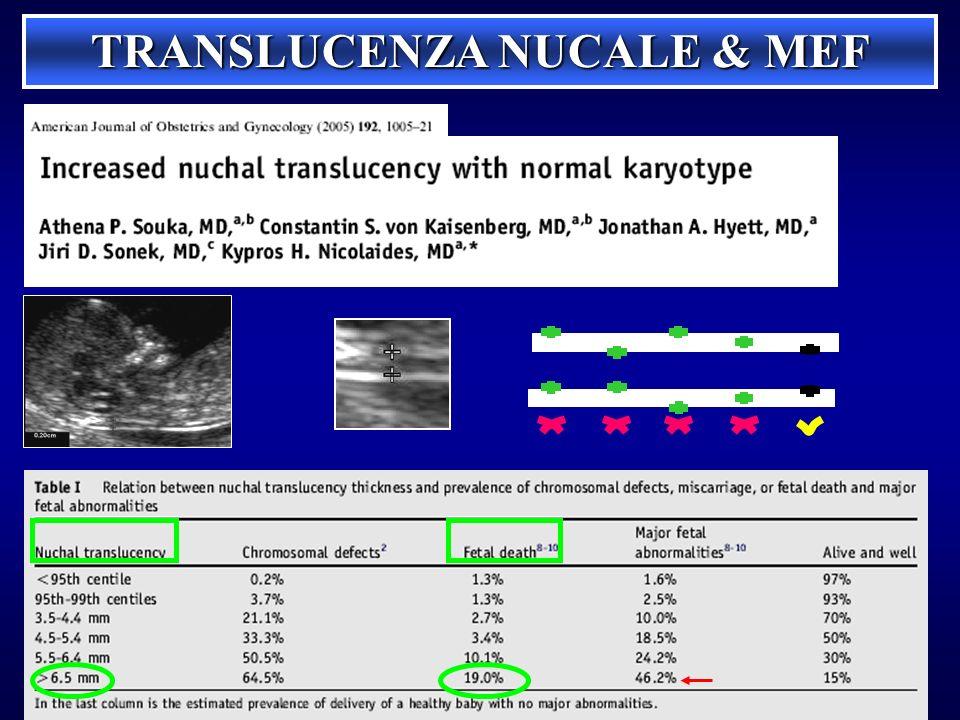 TRANSLUCENZA NUCALE & MEF