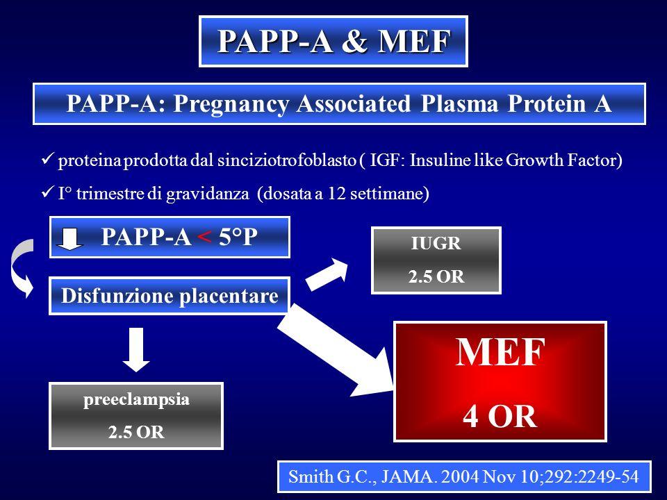 PAPP-A & MEF PAPP-A: Pregnancy Associated Plasma Protein A proteina prodotta dal sinciziotrofoblasto ( IGF: Insuline like Growth Factor) I° trimestre