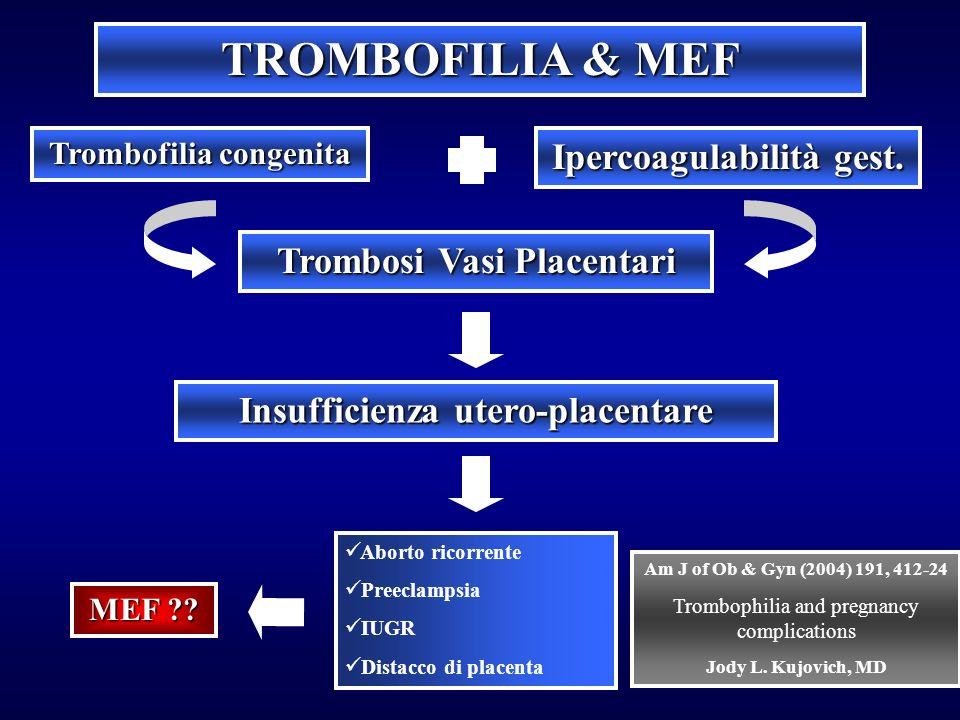 TROMBOFILIA & MEF Trombofilia congenita Ipercoagulabilità gest. Trombosi Vasi Placentari Insufficienza utero-placentare Aborto ricorrente Preeclampsia