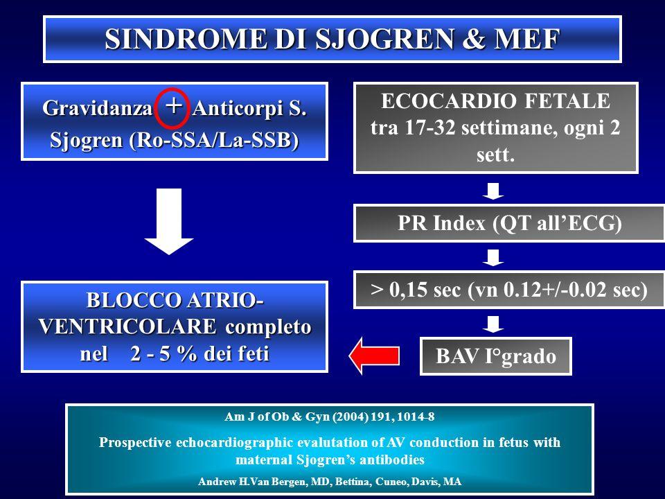 SINDROME DI SJOGREN & MEF Gravidanza + Anticorpi S. Sjogren (Ro-SSA/La-SSB) BLOCCO ATRIO- VENTRICOLARE completo nel 2 - 5 % dei feti ECOCARDIO FETALE