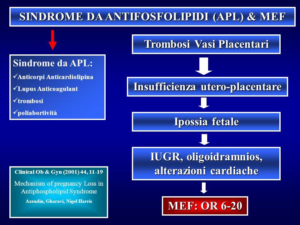 SINDROME DA ANTIFOSFOLIPIDI (APL) & MEF Sindrome da APL: Anticorpi Anticardiolipina Lupus Anticoagulant trombosi poliabortività Trombosi Vasi Placenta