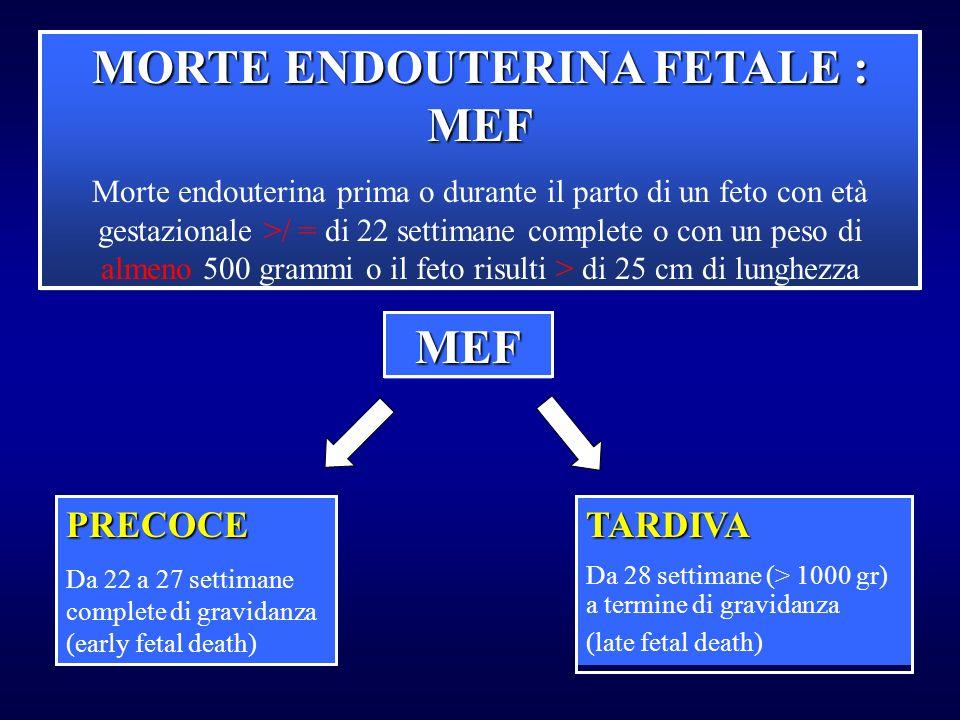 MORTE ENDOUTERINA FETALE : MEF Morte endouterina prima o durante il parto di un feto con età gestazionale >/ = di 22 settimane complete o con un peso