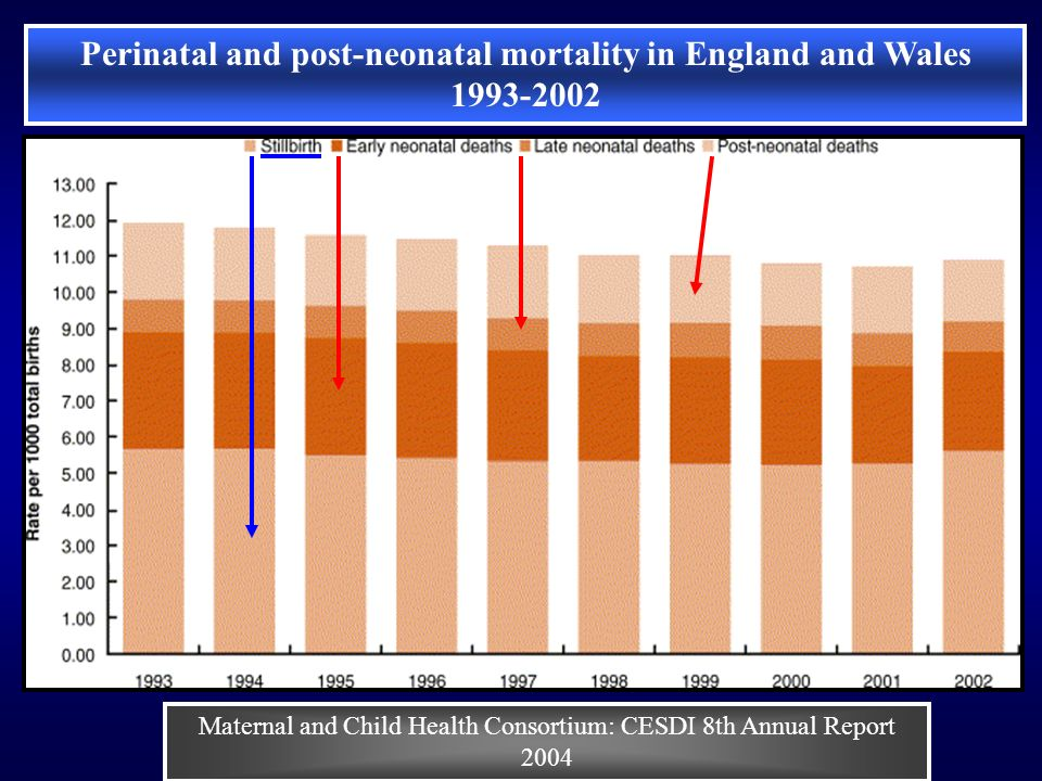 Perinatal and post-neonatal mortality in England and Wales 1993-2002 Maternal and Child Health Consortium: CESDI 8th Annual Report 2004