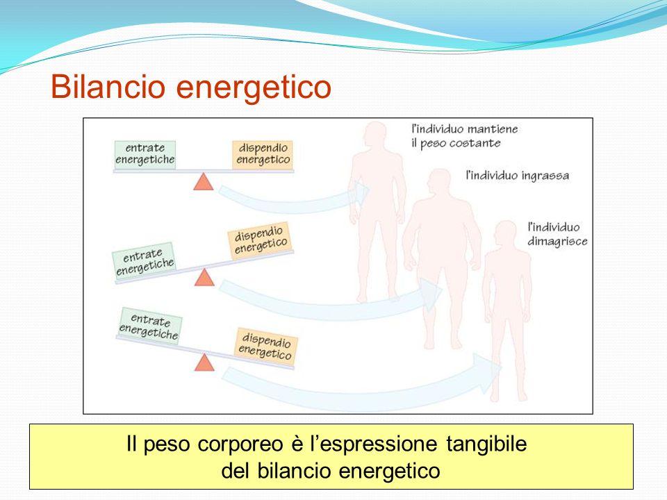 Bilancio energetico Il peso corporeo è lespressione tangibile del bilancio energetico