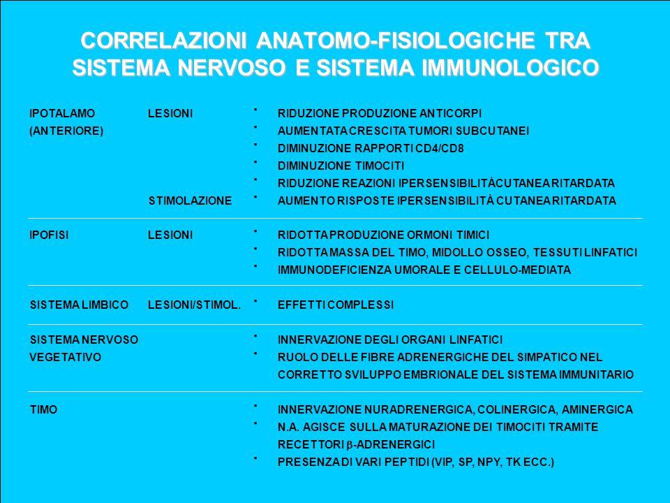 CORRELAZIONI ANATOMO-FISIOLOGICHE TRA SISTEMA NERVOSO E SISTEMA IMMUNOLOGICO IPOTALAMO (ANTERIORE) IPOFISI SISTEMA LIMBICO SISTEMA NERVOSO VEGETATIVO