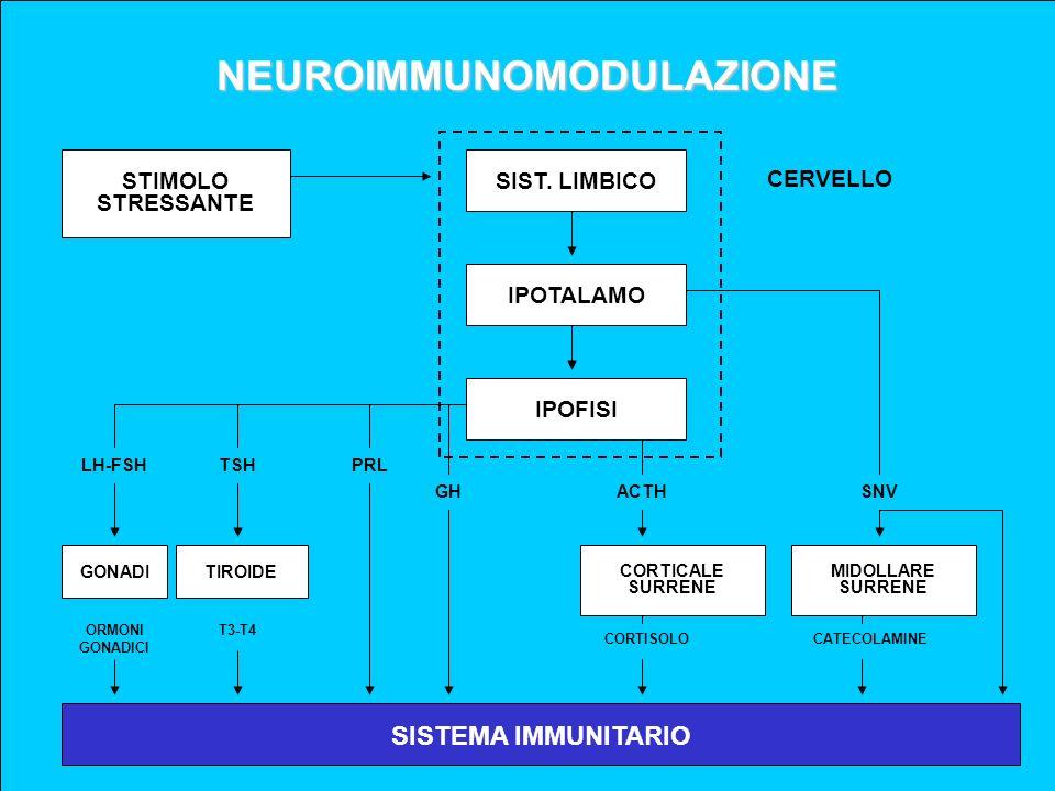 NEUROIMMUNOMODULAZIONE SIST. LIMBICOIPOTALAMOIPOFISI SISTEMA IMMUNITARIO STIMOLO STRESSANTE CERVELLO GONADITIROIDE CORTICALE SURRENE MIDOLLARE SURRENE