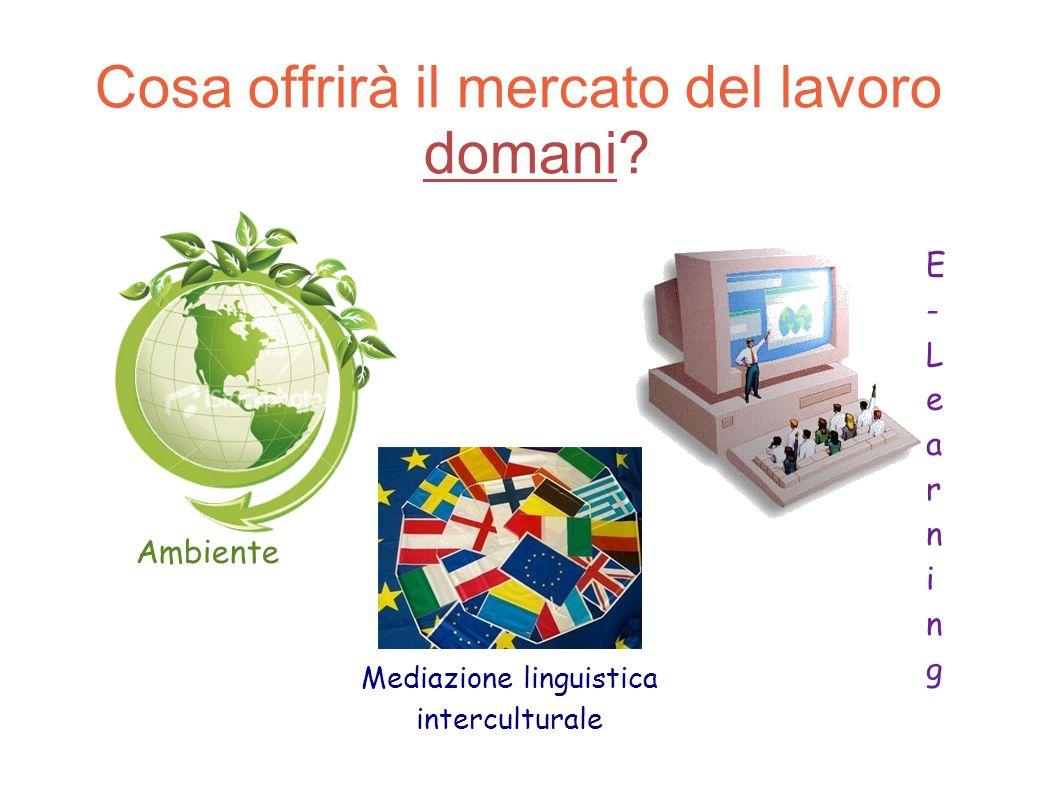 Cosa offrirà il mercato del lavoro domani? Ambiente Mediazione linguistica interculturale E-LearningE-Learning