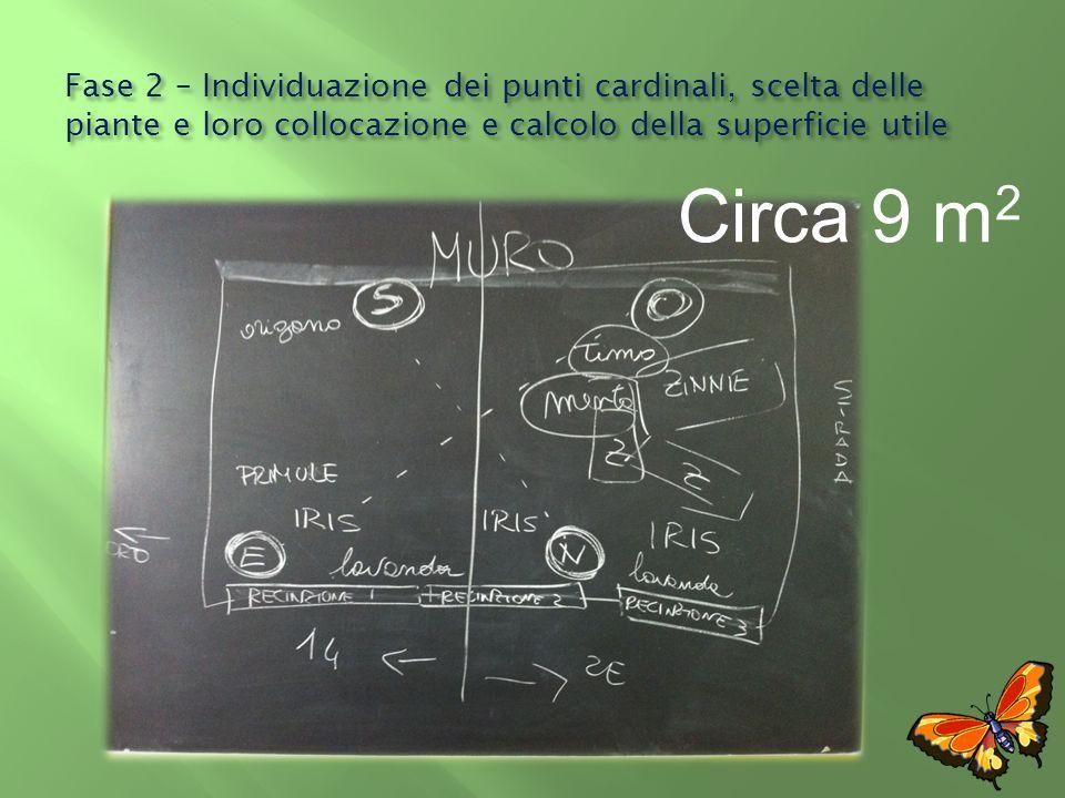 Fase 2 – Individuazione dei punti cardinali, scelta delle piante e loro collocazione e calcolo della superficie utile Circa 9 m 2