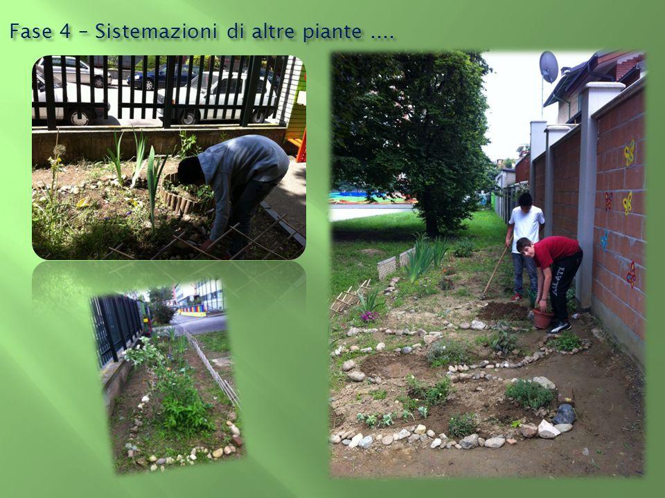Fase 4 – Sistemazioni di altre piante....