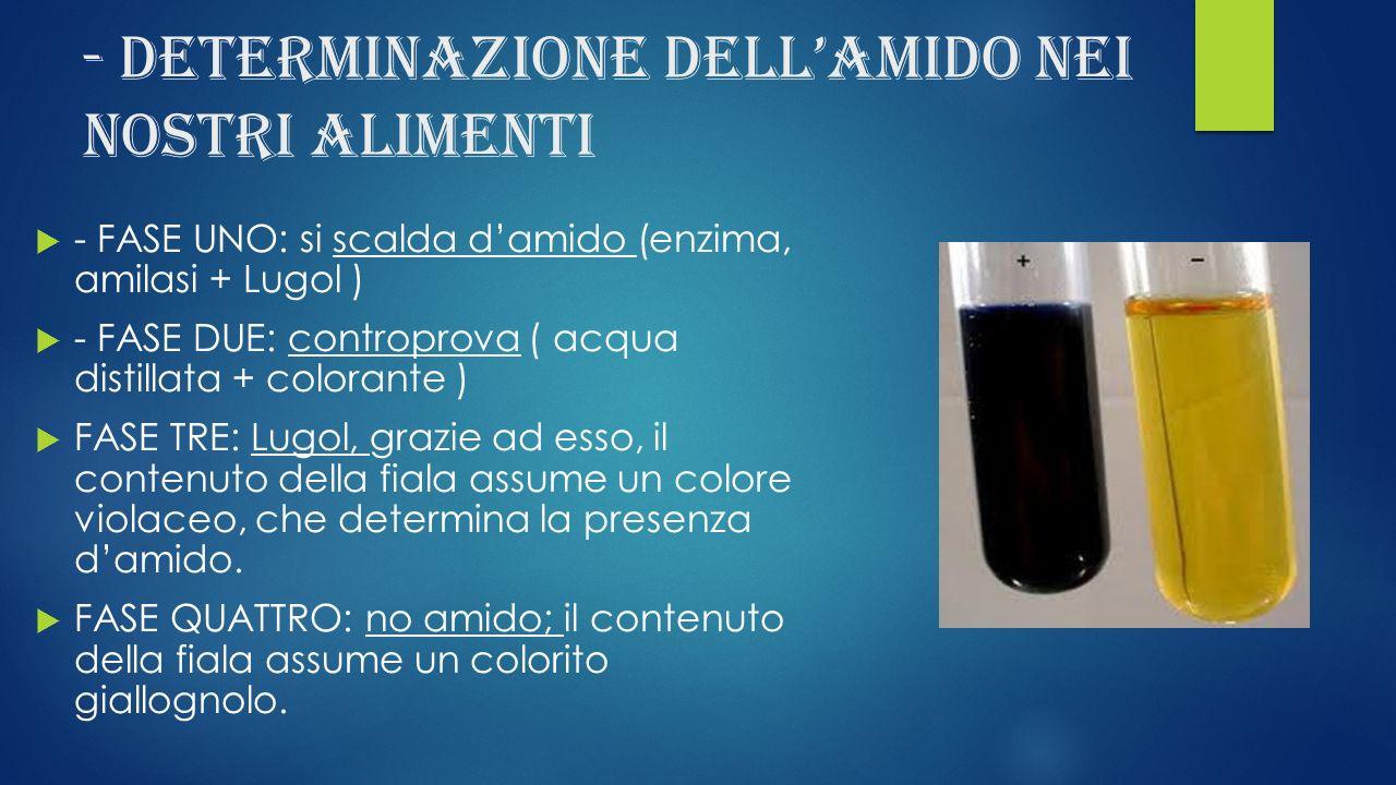 - Determinazione dellamido nei nostri alimenti - FASE UNO: si scalda damido (enzima, amilasi + Lugol ) - FASE DUE: controprova ( acqua distillata + co