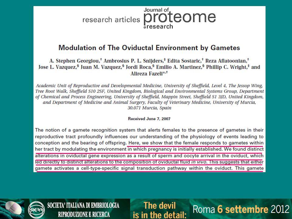 embryo GPS dish (Rieger et al., 2007) Avvicinamento degli embrioni rispetto a micro gocce tradizionali e minore superficie di contatto con lolio Effetti positivi su embrioni di topo
