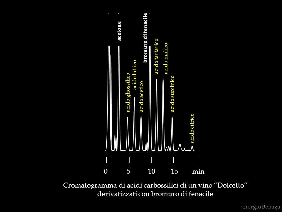 Giorgio Bonaga Cromatogramma di acidi carbossilici di un vino Dolcetto derivatizzati con bromuro di fenacile 0 5 10 15 min acido gliossilico acetone a